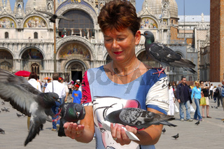 Frau füttert Tauben auf dem Markus-Platz, Venedig