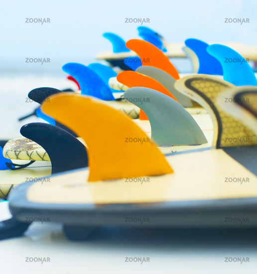 Surf boards and fins up