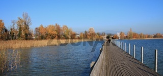 Timber footbridge connecting Rapperswil and Hurden. Lake Obersee, reed and golden trees.