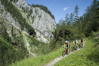 Radtour am Steirersteg im Nationalpark Kalkalpen, Oberösterreich, Österreich