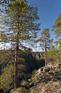 die Schlucht Moskoskorso im Muddus Nationalpark, Welterbe Laponia, Lappland, Schweden