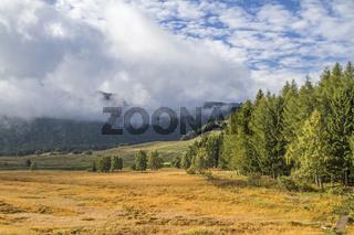 Hochmoor auf dem Monte Bondone