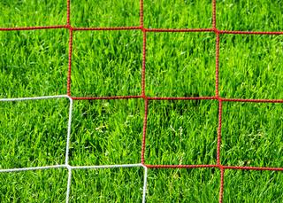 Rasen und Fußball Tor Netz