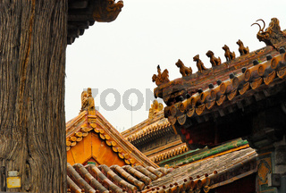 Chinesische Daecher