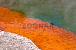 Bubbling colors