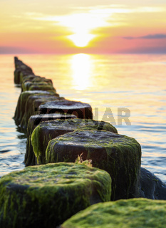 Wooden spur dykes in coastal sunset. Groynes and sea water.