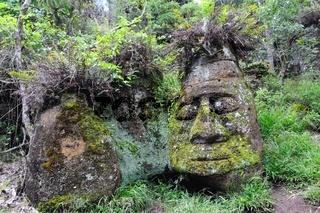 das Steingesicht auf der Insel Floreana Galapagos Inseln Ecuador