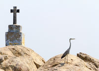 Christian cross and heron on rock island in Kerala backwaters