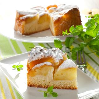 ein Stueck Apfelkuchen / a piece of apple pie
