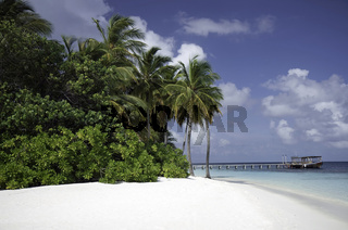 Secluded Tropical white beach, Mirihi, Maldives