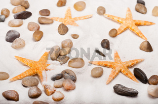 Orange starfish and pebbles on the beach