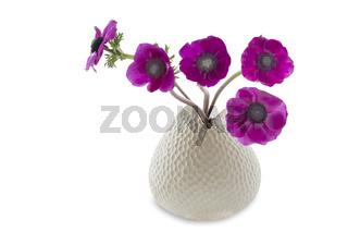 Anemonen in einer Vase auf weißem Hintergrund