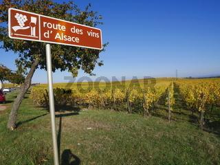 Die berühmte Weinstrasse 'Route des Vins d'Alsace',Elsass,Frankreich