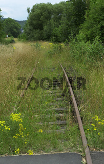 Old vintage railroad accrued with green gras and yellow flowers