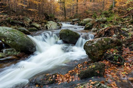 Bergbach im Ilsetal zur Herbstzeit