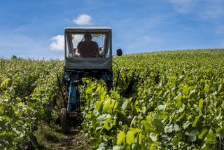 Wine Farmer Vineyards Machinery