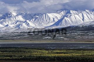 Neuschnee auf den Bergen der Alaskakette / Denali Nationalpark  -  Alaska