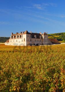 Clos de Vougeot in Burgund