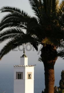 Die Moschee mit dem Minarett in Altstadt von Sidi Bou Said am Mittelmeer und noerdlich der Tunesischen Hauptstadt