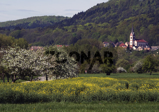 Frühling, Eckhartswiller, Elsass, Frankreich