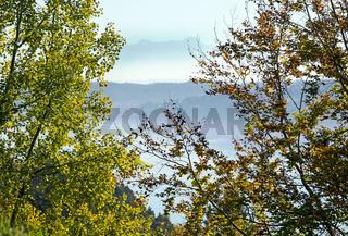 Blick über den Bodensee zu Altmann und Säntis