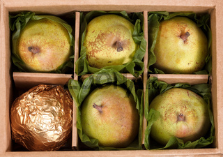 Close up of ripe pears gift wrapped in open box for the holiday seasons