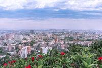 Pattaya Skyline mit Pflanzen