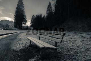 Outdoor bench and frozen grass