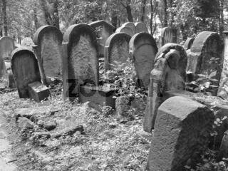 Krakau, Kazimierz, Neuer Juedischer Friedhof