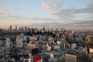 Tokyo City in Japan at sunset