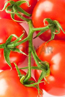 Macro of fresh ripe tomatoes