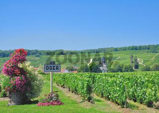Weinort Oger in der Champagne nahe Epernay,Marne Departement,Frankreich