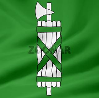 Flagge des Kantons Sankt Gallen