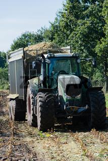 Maisernte, Erntewagen mit Traktor