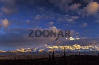 Denali, der hoechste Berg Nordamerikas von Wolken verdeckt / Denali Nationalpark