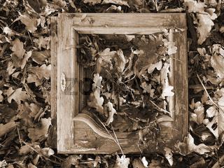 Alte Holztür