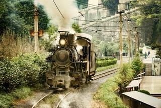 Steam narrow-gauge locomotive.