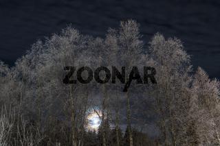 frostige Mondnacht, Pajala, Lappland