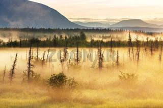 Fog on Alaska