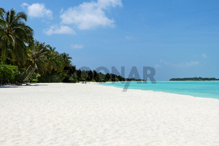 white beach with coconut palms and water on the Maldives