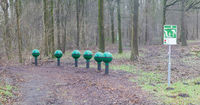 Fitness equipment in a forest - One stage of many