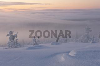 Nebelstimmung, Muddus Nationalpark, Welterbe Laponia, Lappland, Schweden