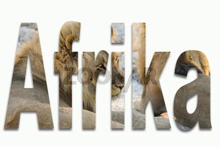 Afrika und Wildtiere in einer Schriftart eingearbeitet