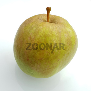 Neulander Söötappel, Apfel, Malus, domestica, Alte Apfelsorte