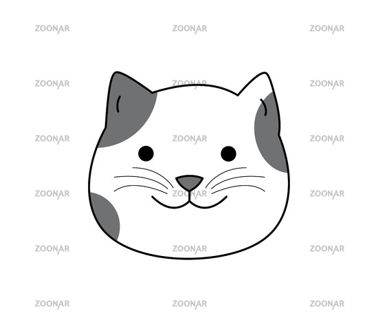 Cat with a cute face is isolated on a white background, funny cat, adorable home pet.