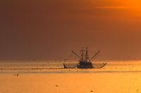 Fischkutter mit Schleppnetz auf der Nordsee bei Sonnenuntergang