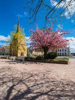 Das Steintor in der Hansestadt Rostock im Frühling