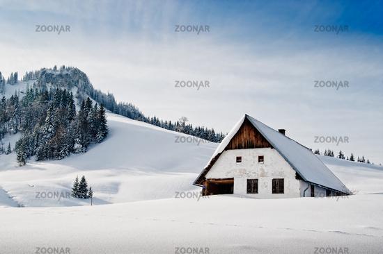 Winter Idyllic