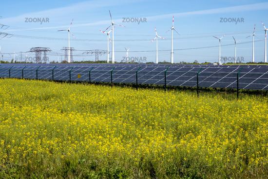 Blühendes Rapsfeld mit alternativer Energiegewinnung