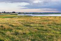 Extensive Weide mit Hasen-Klee und Echtem Labkraut am Sehlendorfer Binnenseee